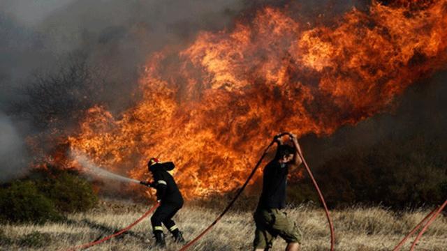 Κόρινθος: Υπό μερικό έλεγχο η φωτιά στον Ξηρόκαμπο Νεμέας