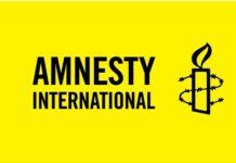 diethnis amnistia